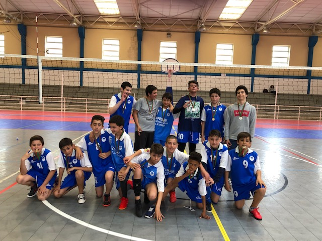 campeoes 2018 2019 3